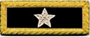 U.S. Shoulder Boards, Brigadier General: 1 Star
